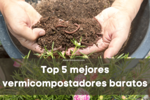 Top 5 vermicompostadores baratos 2021
